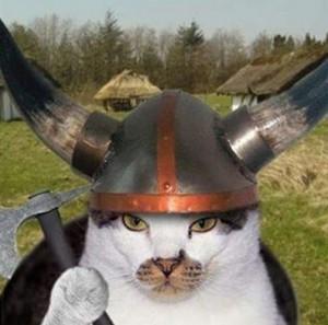 vikingcat